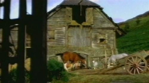 Allegory in animal farm essay