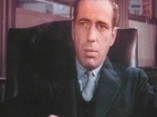 Maltese Falcon The Trailer 1