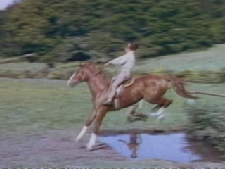 National Velvet Trailer 1