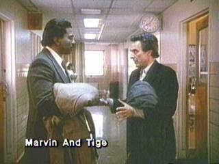 Marvin And Tige