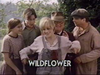 Wildflower