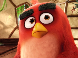 The Angry Birds Movie: Nice Chatting With You