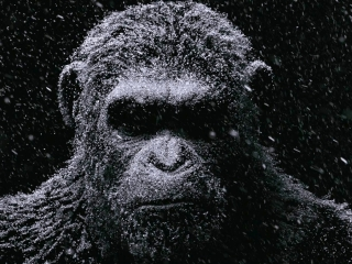 War For The Planet Of The Apes (Teaser)