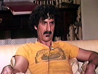 Eat That Question: Frank Zappa In His Own Words: Drugs