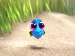 Finding Dory: Baby Dory