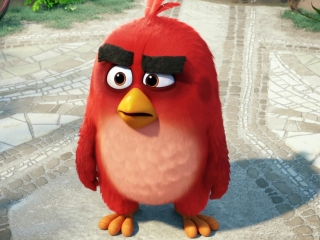 The Angry Birds Movie (Blu-ray/DVD Trailer)