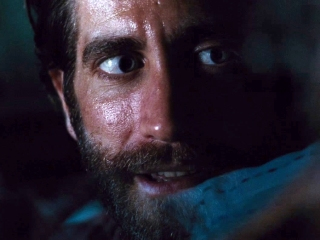 Nocturnal Animals: No Signal Here