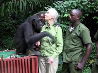 Jane Goodall Compassion Featurette