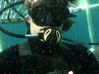 Open water 3 cage dive reviews metacritic - Open water 3 cage dive ...