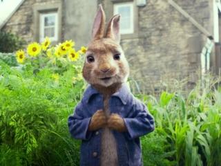 Peter Rabbit (International Trailer 2)