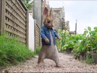 Peter Rabbit: Beatrix Potter's Legacy (Vignette)