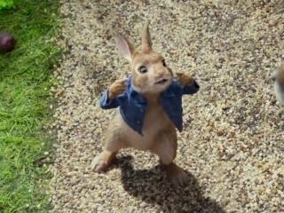 Peter Rabbit: Hero (TV Spot)