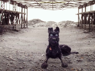Isle Of Dogs: Cast Interviews