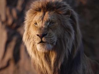 King Returns