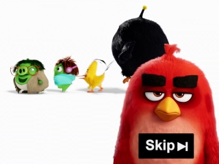 Skip Button Ad