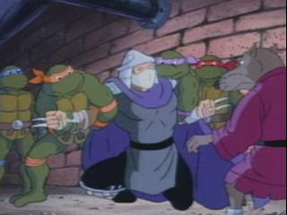 Teenage Mutant Ninja Turtles: Cowabunga, Shredhead