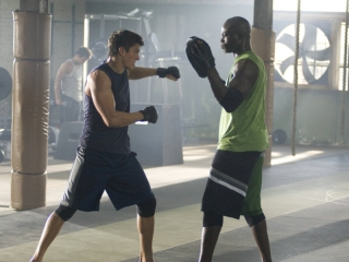 Never Back Down Italian - Never Back Down - Flixster Video