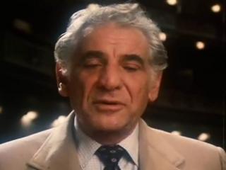 Leonard Bernstein Reflections