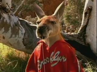 Kangaroo Jack Scene Jack Checks The Pockets