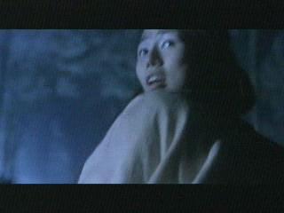 Tsui Harks Vampire Hunters