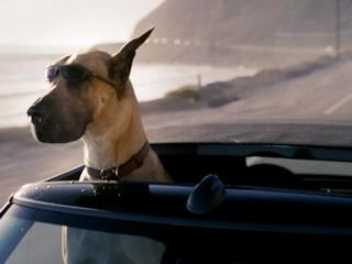 Marmaduke Trailer 1