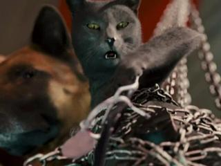Cats  Dogs The Revenge Of Kitty Galore IThink I Like You - Cats  Dogs The Revenge of Kitty Galore - Flixster Video