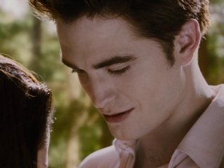 The Twilight Saga Breaking Dawn-part 2