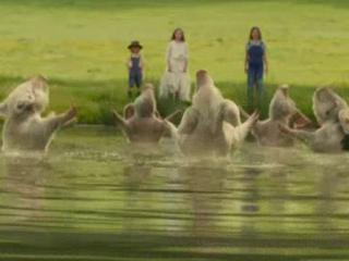 Nanny Mcphee Returns The Pigs Go Swimming - Nanny McPhee Returns - Flixster Video