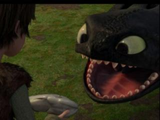 How To Train Your Dragon Dragon By Dragon