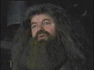 Harry Potter And The Prisoner Of Azkaban Scene Hagrids Hut