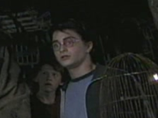 HARRY POTTER AND THE PRISONER OF AZKABAN SCENE: HAGRID'S HUT