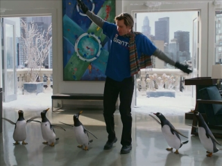Mr Poppers Penguins Penguin Training