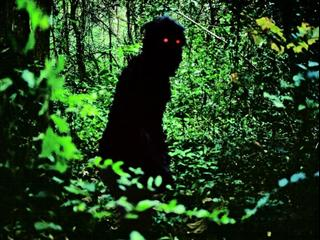 Uncle Boonmee Who Can Recall His Past Lives (Spanish)