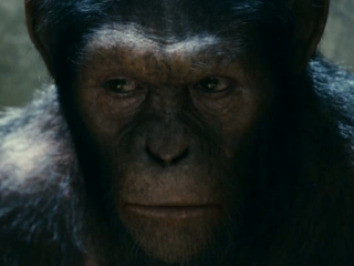 Rise Of The Planet Of The Apes Trailer 1