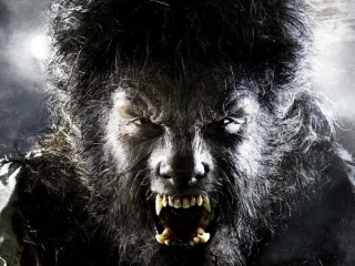 THE WOLFMAN (ITALIAN)