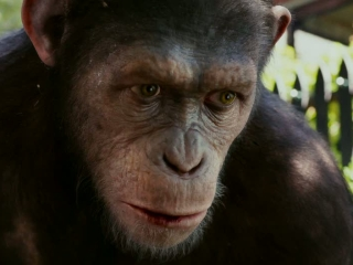 Rise Of The Planet Of The Apes Miracle Uk Tv Spot