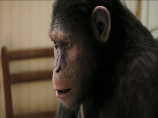 Rise Of The Planet Of The Apes Kitchen Table - Rise of the Planet of the Apes - Flixster Video