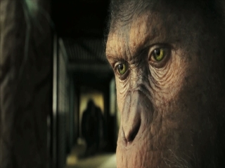 Rise Of The Planet Of The Apes The Awakening