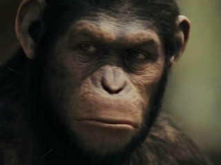 Rise Of The Planet Of The Apes: The Awakening