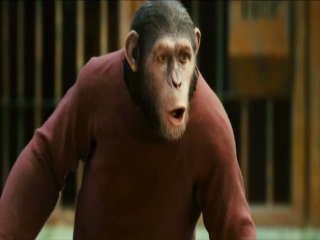 Rise Of The Planet Of The Apes Well Integrate Him - Rise of the Planet of the Apes - Flixster Video