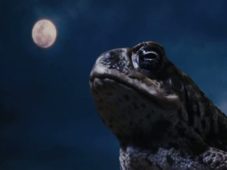 Cane Toads The Conquest 3D