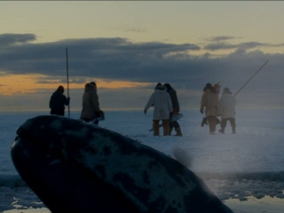 Big Miracle - Big Miracle - Flixster Video