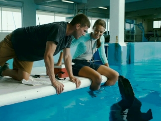 Dolphin Tale Kyle Meets Winter - Dolphin Tale - Flixster Video