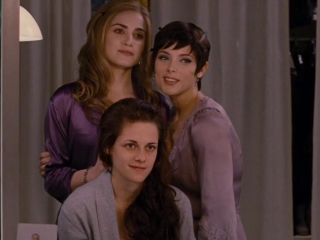 The Twilight Saga Breaking Dawn-part 1 Weddings Bring Everyone Together