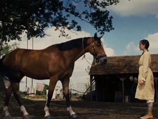 War Horse Emilie Tries To Get Joey To Jump - War Horse - Flixster Video