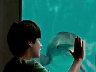 Dolphin Tale Italian
