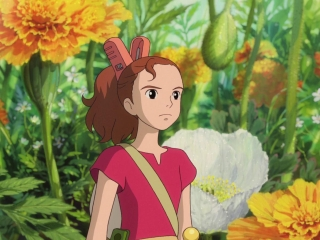 The Secret World Of Arrietty What Are Borrowers - The Secret World of Arrietty - Flixster Video