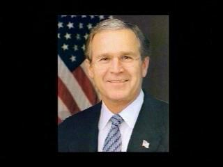 Bushs Brain