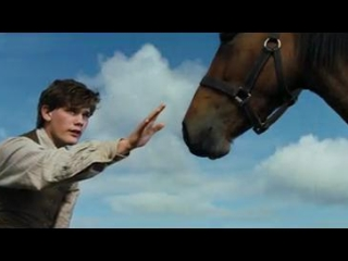 War Horse Italian - War Horse - Flixster Video