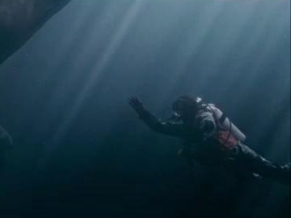 Big Miracle Drews Cold Water Dive Spanish